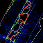 """Mapping New York City's Runnability"""