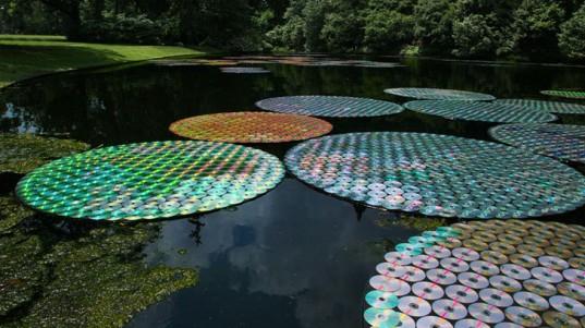 Bruce-Munro-Lilies-537x301