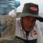 <!--:es-->Charles Moore: Océanos de plástico (TED TALK)<!--:--><!--:en-->Charles Moore: Seas of plastic (TED TALK)<!--:-->