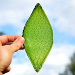 Silk Leaf project, a man-made biological leaf that turns light and water into oxygen