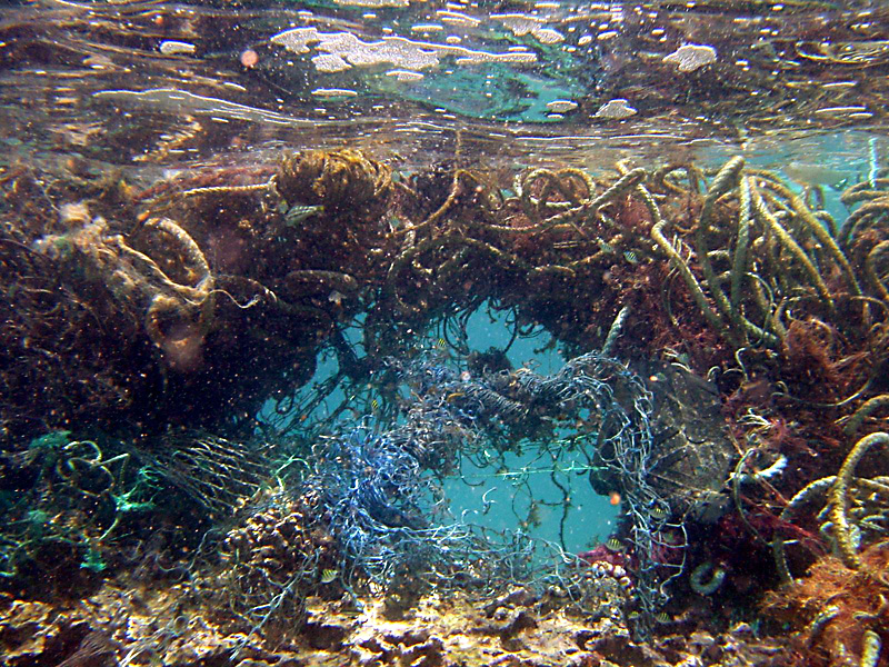 plastic soup-pacific ocean-more than green_4